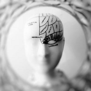 neuroscience self-leadership leadership quest futureofleadership